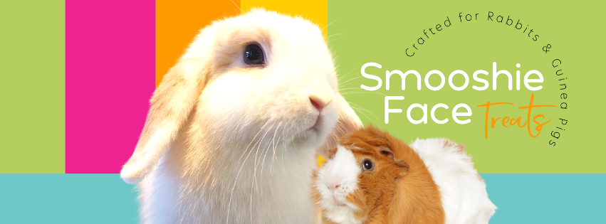 Smooshie Face Treats-Treats crafted for Rabbits and Guinea Pigs. 100% Australian Ingredients.